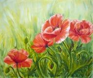 Amapolas, pintura al óleo Fotos de archivo libres de regalías