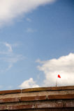 Amapolas rojas fotos de archivo