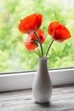 Amapolas rojas en un florero blanco Fotos de archivo