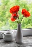 Amapolas rojas en un florero blanco Fotos de archivo libres de regalías