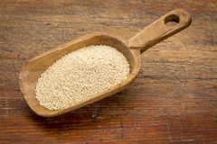 Amaranth grain scoop Royalty Free Stock Photo