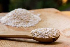 Amaranth Royalty Free Stock Photos
