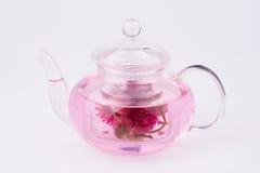 Amaranth Tea  Kettle Stock Photos