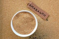 Amaranthe dans la cuvette Photographie stock