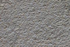 Amarantowa mąka Zdjęcie Royalty Free