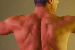 Amarelo masculino dos músculos traseiros fotografia de stock