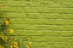 Amarelo no verde Imagens de Stock Royalty Free