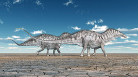 Amargasaurus de dinosaure Images libres de droits
