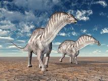 Amargasaurus de dinosaure Photos libres de droits