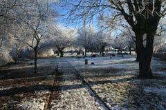 Amargura 1896 del invierno Imagenes de archivo