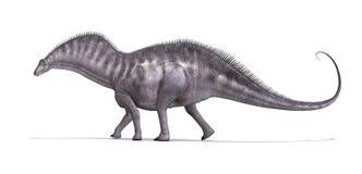 Amargusaurus恐龙 免版税库存图片