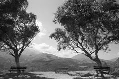 Amari valley in Crete with trees and benches. Greece Stock Images