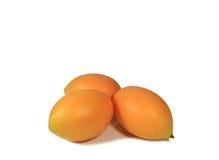 Amarillo anaranjado brillante Marian Plum Fruits Isolated maduro fresco en el fondo blanco con el espacio libre para el diseño Fotografía de archivo libre de regalías