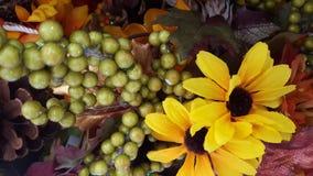 Amarillo, anaranjado, hojas de la caída Fotografía de archivo