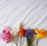 Amarillo, blanco precioso y rosado lilly y tulipán rojo Foto de archivo