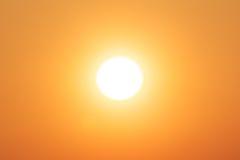 Amarillo brillante del sol del invierno Imagen de archivo libre de regalías