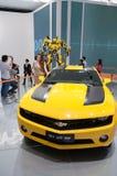 Amarillo de Camaro Imagen de archivo libre de regalías