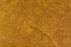 Amarillo de la piel Foto de archivo libre de regalías