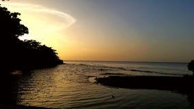 Amarillo Del Mar Image libre de droits