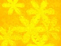 Amarillo del pétalo ilustración del vector
