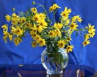 Amarillo en azul Foto de archivo libre de regalías