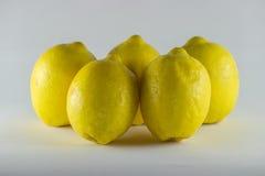 Amarillo natural orgánico healty de la fruta fresca del limón Fotografía de archivo libre de regalías