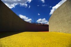 Amarillo y azul Fotos de archivo libres de regalías