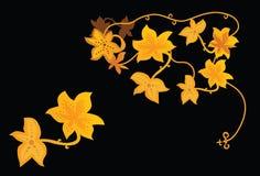 Amarillo y negro del ornamento floral Imagen de archivo libre de regalías