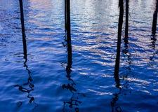 Encre sur l'eau Photographie stock
