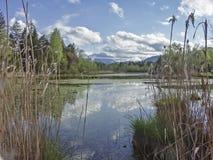 Amarre o lago em Toelz mau imagem de stock royalty free