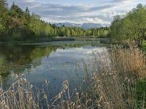 Amarre o lago em Toelz mau fotografia de stock royalty free