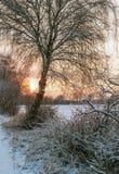 Amarrez en hiver Image stock