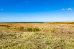 Amarrez la bruyère de la côte sauvage sur l'île d'en Mer de Belle Ile photo stock