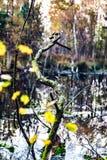 Amarrez le paysage de lac images libres de droits