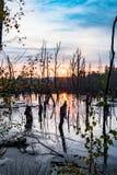 Amarrez le paysage de lac photographie stock libre de droits