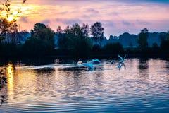 Amarrez le paysage de lac photo libre de droits