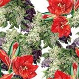 Amaryllis den lila blomman, vattenfärgen, bukett, mönstrar sömlöst Arkivfoto