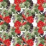 Amaryllis den lila blomman, vattenfärgen, bukett, mönstrar sömlöst Arkivbilder