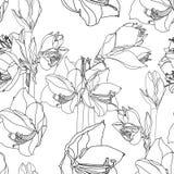 Amaryllis-hippeastrum bloeit schets van het tak lilly de zwarte overzicht op wit naadloos patroon als achtergrond stock illustratie