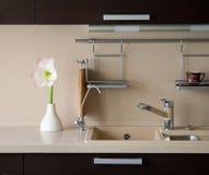 Amaryllis im Kücheinnenraum Lizenzfreie Stockfotos