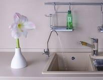 Amaryllis im Kücheinnenraum Stockbilder