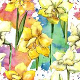 Amaryllis jaune Modèle sans couture de fond Texture d'impression de papier peint de tissu Photographie stock