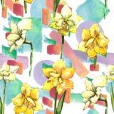Amaryllis jaune Modèle sans couture de fond Texture d'impression de papier peint de tissu Photos libres de droits
