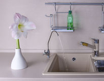 Amaryllis in keukenbinnenland Stock Afbeeldingen
