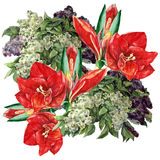 Amaryllis, lilac flower, watercolor, bouquet Royalty Free Stock Image