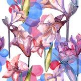 Amaryllis rose Modèle sans couture de fond Texture d'impression de papier peint de tissu Photo libre de droits
