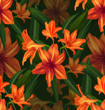 Amaryllis seamless pattern Royalty Free Stock Photography