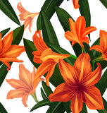 Amaryllis seamless pattern Royalty Free Stock Image