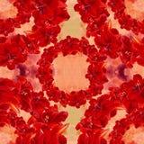amaryllis watercolor Immagine di priorità bassa scheda Reticolo senza giunte wallpaper Immagine Stock Libera da Diritti