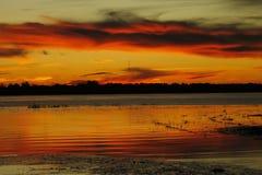 Amasing Red River Стоковое Изображение